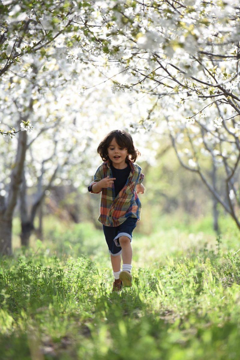 Otrokova igra, učenje organizacije, motnje pozornosti