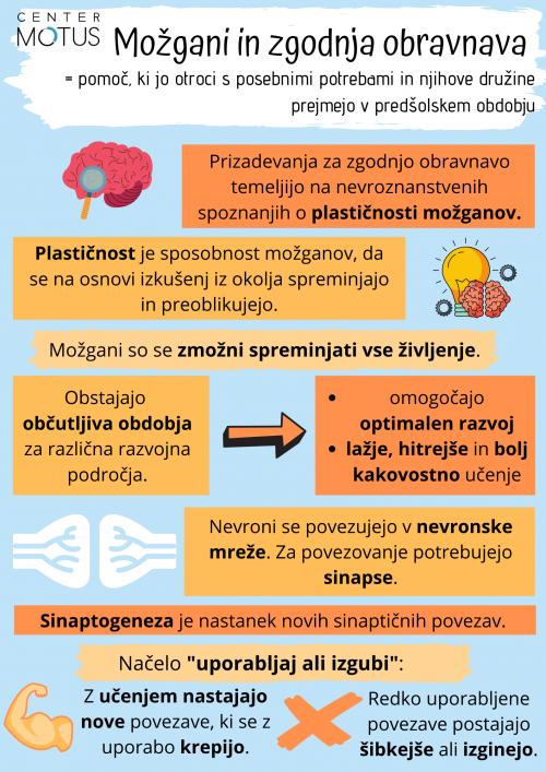 Plastičnost možganov, sinapse, zgodnja obravnava, sinaptogeneza