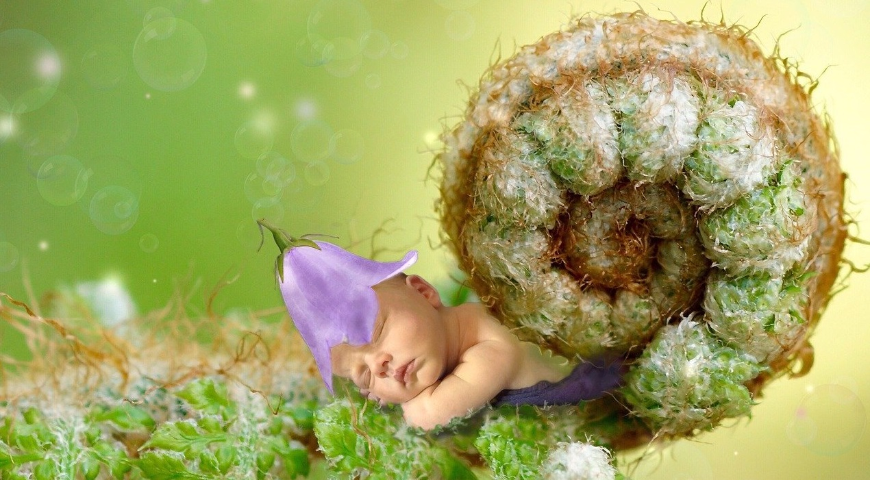 Kako genetika in vzgoja vplivata na razvoj otroka